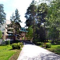 Санаторий Парус, hotel in Berdsk