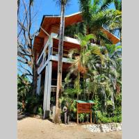 Nosara Tree House