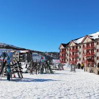Ski Lodge Tänndalen, hotel in Tänndalen