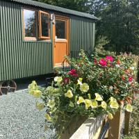 Shepherds Hut, Self catering, Mid-Wales, Powys