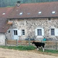 Gite a la ferme, hotel in Le Malzieu-Ville