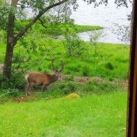 Glenfinnan Retreats, OAK Cabin