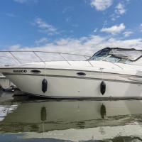 Riverscapes American Sports Motor Cruiser plus hot tub