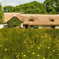 Hay Meadow Farm