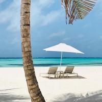 Punta Cana Beach Resort, hotel near Punta Cana International Airport - PUJ, Punta Cana