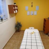 Penzion Starr, hôtel à Havlíčkův Brod