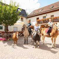 Pension Ferienhof Fischer, Hotel in Freiberg