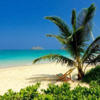 Brand New Kailua Beach