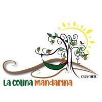La Colina Mandarina II. Casa de madera., отель в городе Tahal