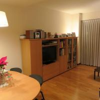Nice apartment in Jujol