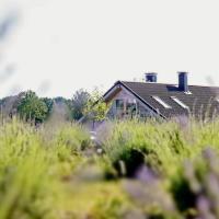 Lavender Village, hotel in Kiemeliai