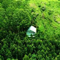 La Flora Spicewood,Munnar