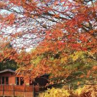 Glas Doire Lodge, Glen Roy Nature Reserve