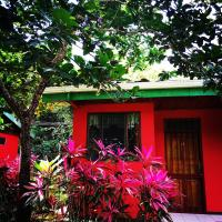 Iguana Jungle House