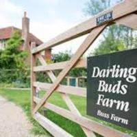 Darling Buds of May Farm - Cart Lodge, hotel in Bethersden