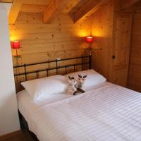 Wanderoo MOUNTAIN & COSY chalet 10 pers, hotel in Veysonnaz