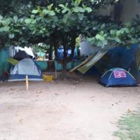 Camping da tartaruga 5