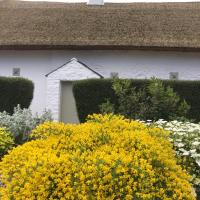 Connells House Thatched Cottage
