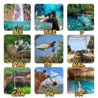 Pantanal Trip Tur Turismo