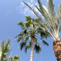 FANTASTIC 1 BED APARTMENT OPPOSITE 4 SEASONS LIMASSOL, hotel in Limassol