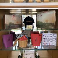 悟 佐茶 Satori tea