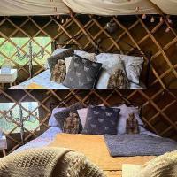 Yurt with log burner & pizza oven by the pond,彭布羅克郡的飯店