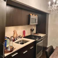 Luxury Large Apartment in Manhattan