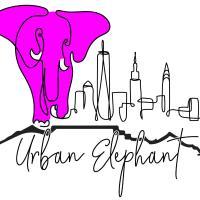 Urban Elephant. The Docklands, hotel in De Waterkant, Cape Town