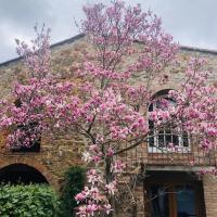 La Mugnana, hotel in Greve in Chianti