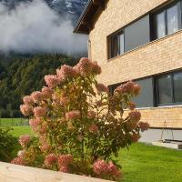 Haus Feuerstein, Hotel in Schnepfau