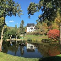 Appartements Maison Bellevue, hotel en Munster