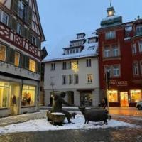 Fam M&H Schöne 2 Zimmer Ferienwohnung in Wangen Stadtmitte, hotel in Wangen im Allgäu
