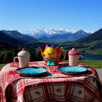 Gorgeous Alps and Lake View Studio, hotel in Oberägeri