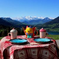 Gorgeous Alps and Lake View Studio