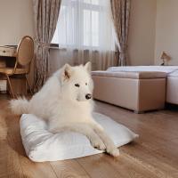 Отель «Медный Двор»