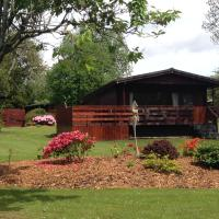 Bluebell Lodge 3 with Hot Tub Newton Stewart