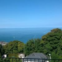 Verity and Ilfracombe Harbour View