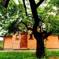 Tylicki Stary Dom