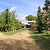 Lavish Eco Jungle