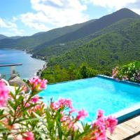 Tortola Adventure Private Villa with OceanView Pool