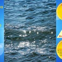 TREASURED FUN -SEA VIEW - INDOOR POOL - By BEACH