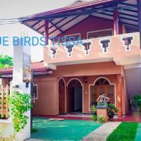 Blue Birds Tissa