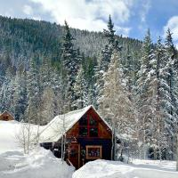 Pioneer Guest Cabins, hotel in Crested Butte