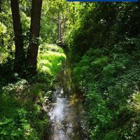 De Eppenbeek