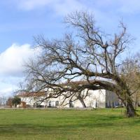 Domaine de Simorre; Calme et Charme en Haute-Garonne
