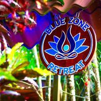 Blue Zone Retreat