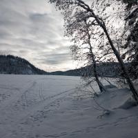 Leilighet med utsikt nær Nordmarka, hotel in Harestua