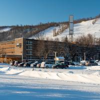 Blue Mountain Resort Inn, hotel in Blue Mountains