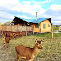 Luxury Safari Lodge surrounded by deer!! 'Roe'