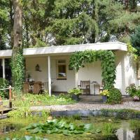 Luxury Bungalow in Drenthe with Pond